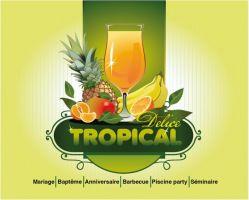 Delice Tropical